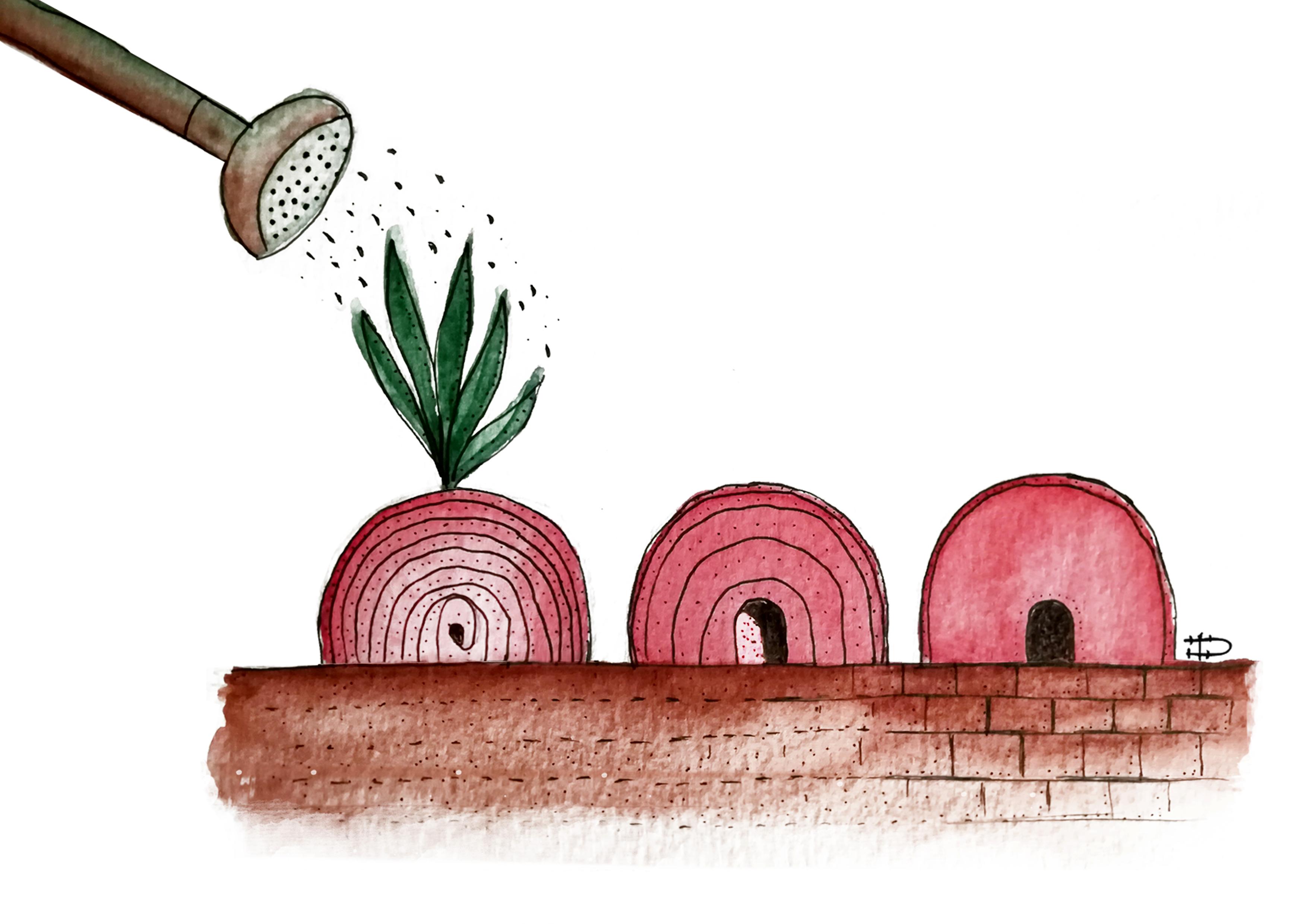 Gloria Oddo-Illustrazione-Palermo è un ravanello-2