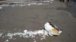 polistirolo spiaggia mondello 2-2
