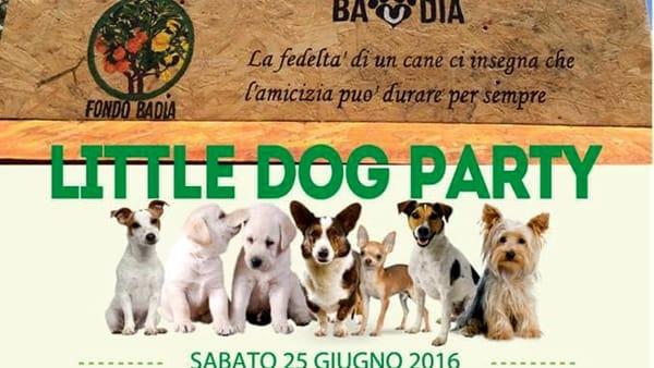 """Little dog party"", manifestazione canina nel parco Fondo Badia"