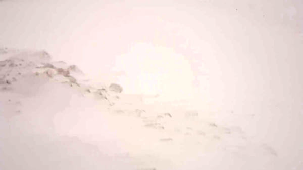 L'ospedale di Petralia Sottana sommerso dalla neve | VIDEO