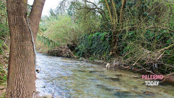 Puliamo il mondo, dal fiume Oreto a Terrasini e Corleone: le iniziative di Legambiente