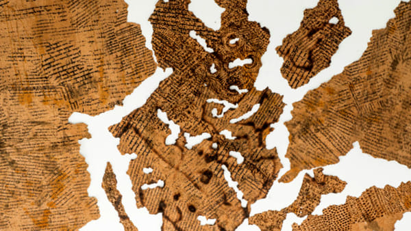 Sul sughero si legge la storia del mondo, la mostra di Avner Sher allo Steri