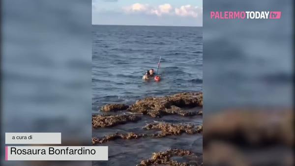 VIDEO | Aeroporto, cane scappa e finisce in mare: volontario sfida il freddo e lo salva