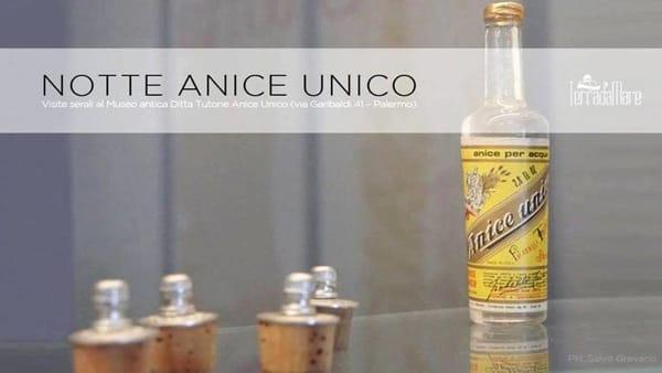 Alla scoperta della storica bevanda che sorseggiava Garibaldi: tour al museo dell'anice Tutone