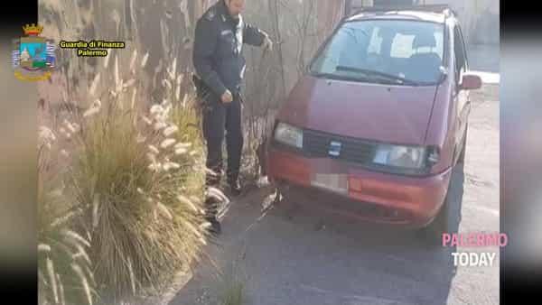 VIDEO | Sigarette di contrabbando nel vano motore dell'auto: la perquisizione col cane Arca