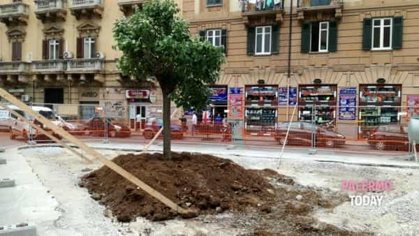 Piazza Bottego risorge dopo diversi lustri di inagibilità.-4
