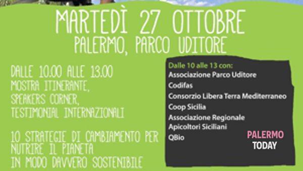 In Sicilia approda il grand tour di Expo dei popoli