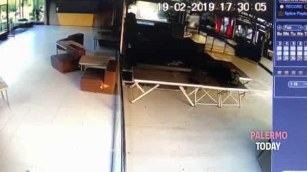 Country, il ladro barcolla e molla: le immagini del furto andato a vuoto | VIDEO