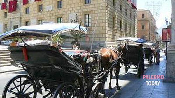 Una passeggiata in carrozza, a spasso nel tempo alla scoperta della Palermo notturna