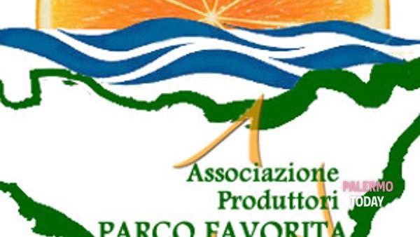 volontari dell'associazione produttori parco della favorita per salvare il polmone verde di palermo.-3
