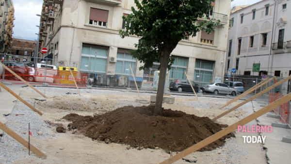 Piazza Bottego risorge dopo diversi lustri di inagibilità.-7
