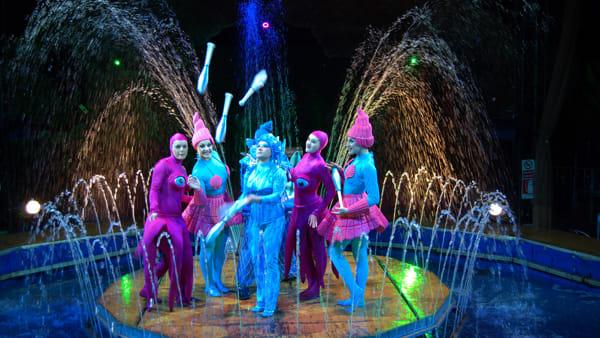 Circo acquatico, gli animali del mare in un grande show acrobatico al Conca d'Oro