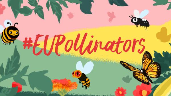 Giornata mondiale dell'ape, al Bioparco di Sicilia l'appuntamento per bambini e non