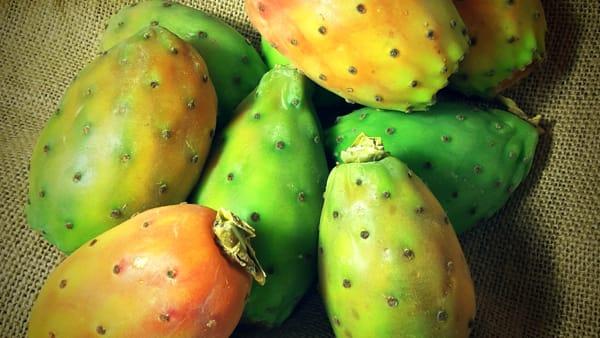 Dalle stelle al ficodindia, a Roccapalumba la sagra dedicata al frutto dolce e spinoso