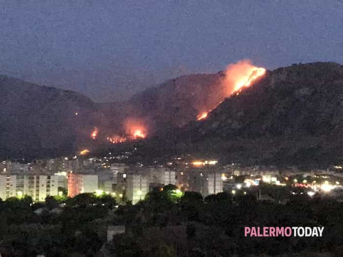 incendio monte Grifone